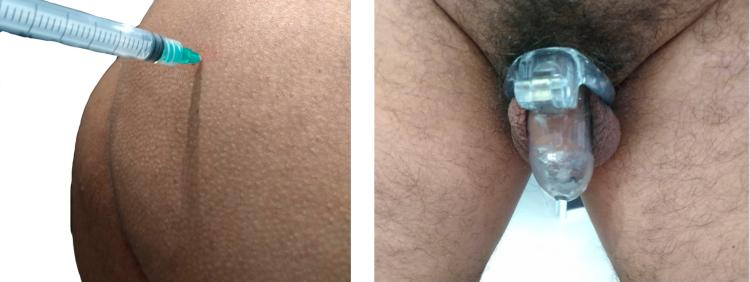 Izquierda anabolicos (Testosterona y Prim) - Derecha Jaula Holy Trainer Small.